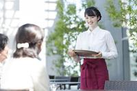カフェで働く女性店員 02381000895| 写真素材・ストックフォト・画像・イラスト素材|アマナイメージズ