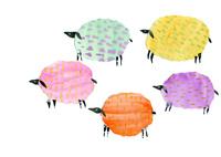 5色の羊 02390000082| 写真素材・ストックフォト・画像・イラスト素材|アマナイメージズ