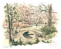 冬の井の頭公園 02398000277| 写真素材・ストックフォト・画像・イラスト素材|アマナイメージズ