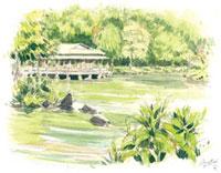 新緑の清澄庭園 02398000286| 写真素材・ストックフォト・画像・イラスト素材|アマナイメージズ
