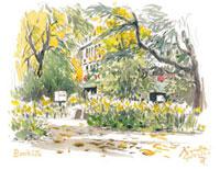 日比谷公園の秋の松本楼 02398000292| 写真素材・ストックフォト・画像・イラスト素材|アマナイメージズ