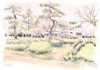 東御苑諏訪の茶屋