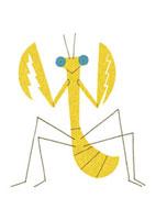 黄色のカマキリ