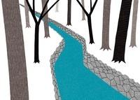 林の中を流れる小川