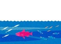 海を泳ぐ魚たち