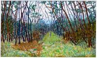 木立の道と風