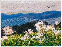チングルマの花と立山