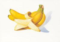 バナナ イラスト 02405000042| 写真素材・ストックフォト・画像・イラスト素材|アマナイメージズ