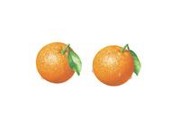 オレンジ(水滴付き) イラスト 02405000119| 写真素材・ストックフォト・画像・イラスト素材|アマナイメージズ