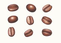 コーヒー豆 イラスト 02405000138| 写真素材・ストックフォト・画像・イラスト素材|アマナイメージズ