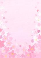 ピンク地の桜の花