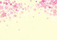黄色地に舞う桜の花