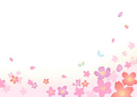 桜の花と蝶々