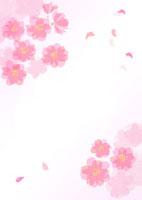 桜のフレームと舞う花びら