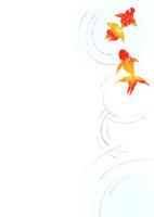 金魚と水の波紋