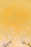 金箔の前の梅花
