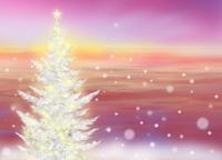 クリスマスに輝く 02411000058| 写真素材・ストックフォト・画像・イラスト素材|アマナイメージズ