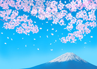 桜と富士山 02411000073| 写真素材・ストックフォト・画像・イラスト素材|アマナイメージズ