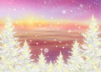 地平線とクリスマスツリー