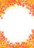 紅葉したモミジの葉に囲まれる