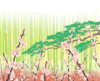 松竹梅 02411000106| 写真素材・ストックフォト・画像・イラスト素材|アマナイメージズ