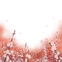 紅地に白梅が舞う 02411000109| 写真素材・ストックフォト・画像・イラスト素材|アマナイメージズ
