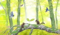 森の中の芽 02411000117| 写真素材・ストックフォト・画像・イラスト素材|アマナイメージズ