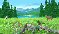 高原の虹 02411000119| 写真素材・ストックフォト・画像・イラスト素材|アマナイメージズ