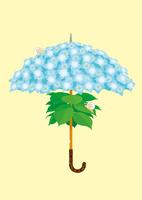 静物_紫陽花の傘とカタツムリ 02412000027| 写真素材・ストックフォト・画像・イラスト素材|アマナイメージズ
