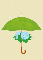 静物_紫陽花の傘と雨蛙