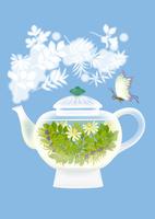 静物_ガラス製ティーポットと蝶 02412000119| 写真素材・ストックフォト・画像・イラスト素材|アマナイメージズ