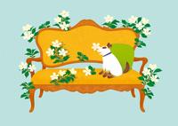 静物_クラシックな長椅子と子犬 02412000141| 写真素材・ストックフォト・画像・イラスト素材|アマナイメージズ