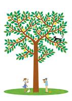 休日のカップルと大きな樹
