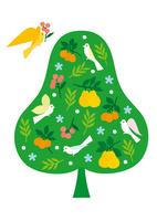 鳥とフルーツの樹 02412000263| 写真素材・ストックフォト・画像・イラスト素材|アマナイメージズ