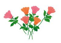 バラの花 02412000314| 写真素材・ストックフォト・画像・イラスト素材|アマナイメージズ