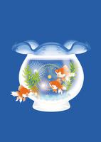 金魚鉢と花火