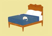 クラシックなベッドで眠る猫 02412000339| 写真素材・ストックフォト・画像・イラスト素材|アマナイメージズ