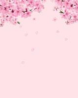 桃の花 02413000007| 写真素材・ストックフォト・画像・イラスト素材|アマナイメージズ