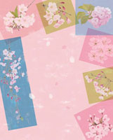 桜の短冊と色紙