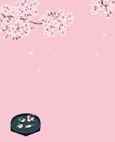 桜と春の和菓子 02413000010| 写真素材・ストックフォト・画像・イラスト素材|アマナイメージズ