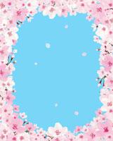 青空と桜のフレーム 02413000019| 写真素材・ストックフォト・画像・イラスト素材|アマナイメージズ