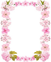 4種類の桜のフレーム