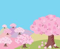 吉野の山桜 02413000023| 写真素材・ストックフォト・画像・イラスト素材|アマナイメージズ