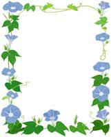 ブルーの朝顔フレーム 02413000043| 写真素材・ストックフォト・画像・イラスト素材|アマナイメージズ