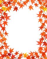 紅葉のフレーム 02413000057| 写真素材・ストックフォト・画像・イラスト素材|アマナイメージズ