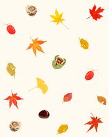 もみじと秋の実り