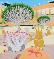 世界遺産イエメン ソコトラ諸島 02422000070| 写真素材・ストックフォト・画像・イラスト素材|アマナイメージズ