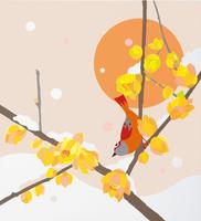 ロウバイ 冬 02422000128| 写真素材・ストックフォト・画像・イラスト素材|アマナイメージズ