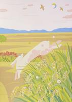 収穫の秋 02422000151| 写真素材・ストックフォト・画像・イラスト素材|アマナイメージズ