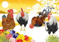 お花と四羽の鶏